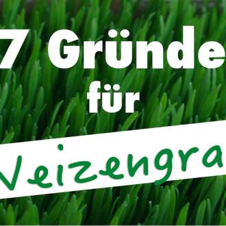 7 Gründe für Weizengras